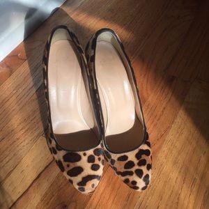 J crew leopard print pony hair Block  heels